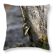 Nature's Detail Throw Pillow