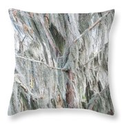 Natures Drapery At Okefenokee Swamp Throw Pillow