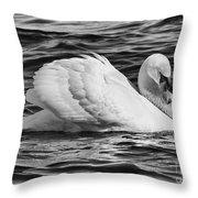 Nature's Elegance  Throw Pillow