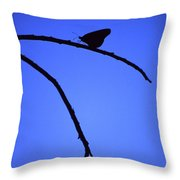 Natures Elegance Throw Pillow