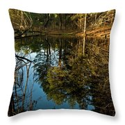 Natures Elements  Throw Pillow
