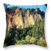 Nature's Entry To Yankee Meadows Throw Pillow