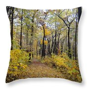 Nature's Expression -1 Throw Pillow