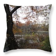 Nature's Expression-13 Throw Pillow