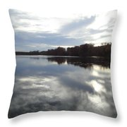 Nature's Expression-14 Throw Pillow