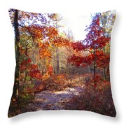Nature's Expression-17 Throw Pillow