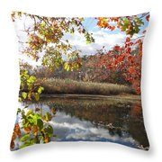 Nature's Expression-18 Throw Pillow