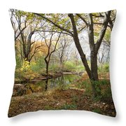 Nature's Expression 21 Throw Pillow