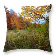 Nature's Expression-3 Throw Pillow