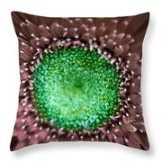 Nature's Eye Throw Pillow