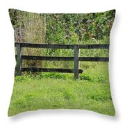 Natures Fence Throw Pillow