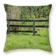 Natures Fence Throw Pillow