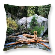 Nature's Filters Throw Pillow