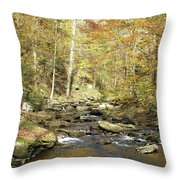 Nature's Finest 5 - Ricketts Glen Throw Pillow
