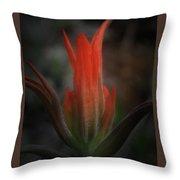 Nature's Fire Throw Pillow
