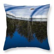 Natures Flip Side Throw Pillow