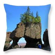 Natures Flower Pots Throw Pillow