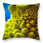 Nature's Fractals Throw Pillow
