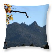 Nature's Frame Throw Pillow
