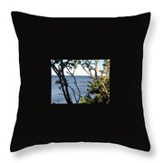 Nature's Frame Throw Pillow