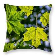 Natures Going Green Design Throw Pillow