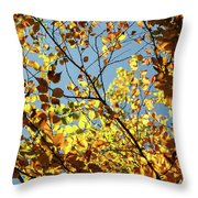 Natures Gold Throw Pillow