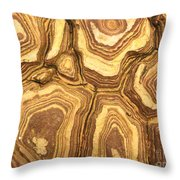 Nature's Interesting Patterns Throw Pillow