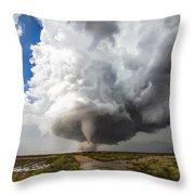 Nature's Irony Throw Pillow