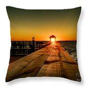 Nature's Lantern Throw Pillow