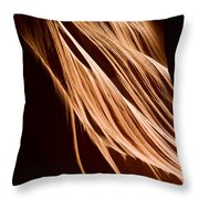 Natures Lines Throw Pillow