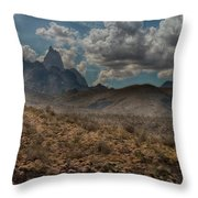 Natures Majesty Throw Pillow