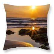 Nature's Masterpiece Throw Pillow