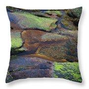 Nature's Mosaic No. 1 Throw Pillow
