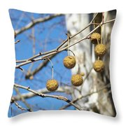 Nature's Ornaments Throw Pillow