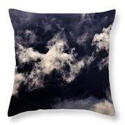 Natures Paint Daubs Throw Pillow