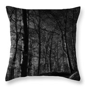 Nature's Path Throw Pillow