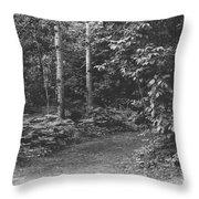 Natures Path Throw Pillow