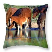 Nature's Reflections  Throw Pillow