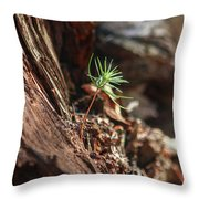 Natures Renewal  Throw Pillow