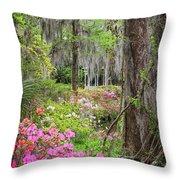 Natures Scenery  Throw Pillow
