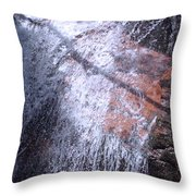 Nature's Shower Head Throw Pillow