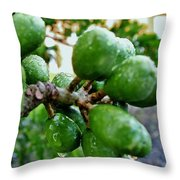 Nature's Shower Throw Pillow