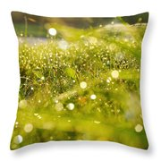 Nature's Sparkles Throw Pillow
