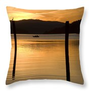 Natures Spotlight Throw Pillow
