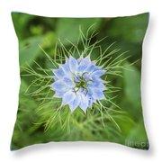 Natures Star Throw Pillow