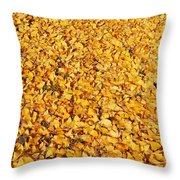 Nature's Sunshine Leaves Throw Pillow