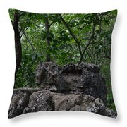 Nature's Throne Throw Pillow