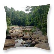 Nature's Treasure Throw Pillow
