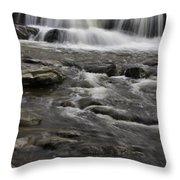 Natures Water Beauty Throw Pillow