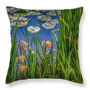 Nature's Window #h5 Throw Pillow by Leif Sohlman
